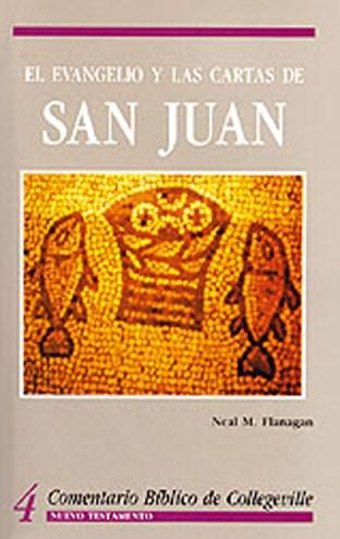 Comentario Bíblico De Collegeville Nt Volume 4: El Evangelio Y Las Cartas De San Juan