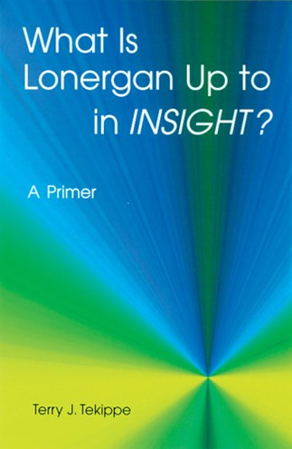 What is Lonergan Up to in Insight?