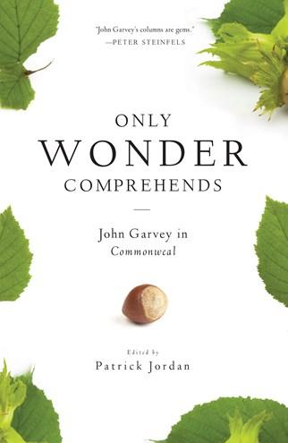 Only Wonder Comprehends