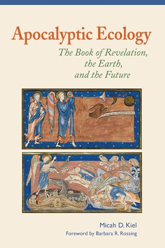Apocalyptic ecology the book of revelation the earth and the apocalyptic ecology the book of revelation the earth and the future micah d kiel foreword by barbara r rossing 9780814687833 litpress ebook fandeluxe Image collections